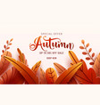 autumn sale background fall frame and text vector image vector image