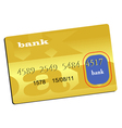 golden credit card vector image vector image