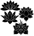 Lotus set vector image