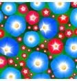 Pattern with ipomoea flowers vector image vector image