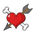 Heart and arrow symbol of love Bone and heart vector image