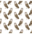 pattern barn owl vector image