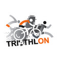 Triathlon racers vector image