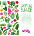 tropical layout vector image vector image