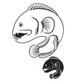 wolffish vector image vector image