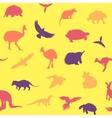 Australian animals pattern vector image