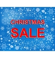 Big winter sale poster with CHRISTMAS SALE text vector image vector image