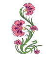 carnations drawing vector image