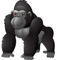 cartoon funny gorilla isolated on white background vector image vector image