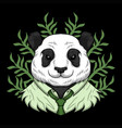 panda work cartoon vector image
