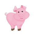 pig cartoon pink piggy animal character vector image
