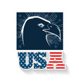 usa eagle design vector image