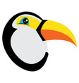 avatar of toucan vector image