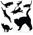 cat black silhouettes vector image vector image
