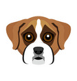 cute boxer dog avatar vector image vector image