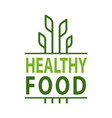 healthy food leaves and lettering organic products vector image
