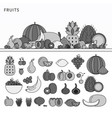 many fruits on table line monochrome vector image vector image