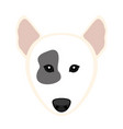 cute bull terrier dog avatar vector image vector image