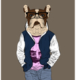 Fashion man with the head of French Bulldog vector image