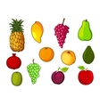 Fresh tropical and garden fruits vector image vector image
