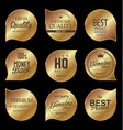 golden badges premium quality vector image vector image