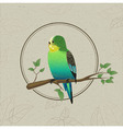 Parrot sketch Decorative bird vector image