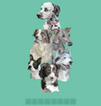 postcard with dogs different breeds-6 vector image vector image
