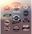 Premium and High Quality Label vector image vector image