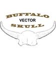 Old Buffalo Skull vector image