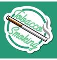 Color vintage smoking emblem vector image vector image