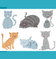cute cats and kittens characters set vector image vector image