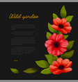 flowers web banner template with red poppies on vector image