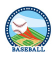 circle sticker with baseball ball equipment vector image