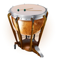 Classical timpani drum isolated on white vector image