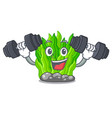 fitness green seaweed in the cartoon shape vector image vector image