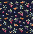 watercolor berries pattern vector image vector image