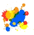 isolated spot blots vector image