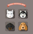 animal portrait with flat design dogs vector image vector image