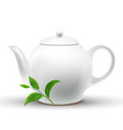 ceramic white teapot with green tea leaf vector image vector image