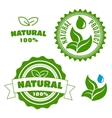 Natural product labels with leaves and drops vector image