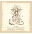 Pineapple retro style poster vector image