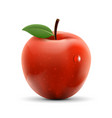 red apple isolated on white background ripe fruit vector image