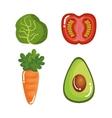 set vegetables healthy food vector image