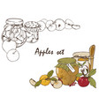 apples set vector image vector image
