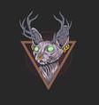 cat sphynx antlers design artwork vector image vector image