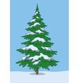 Christmas tree snow and sky vector image vector image