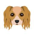 cute cavalier king charles spaniel dog avatar vector image vector image