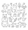 doodle forest animals woodland cute baby animal vector image vector image
