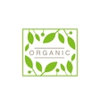 Frame With Leaves And Fruit Organic Product Logo vector image vector image