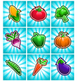 Glossy Colorful Vegetables vector image